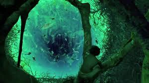 Look Down Deep Inside